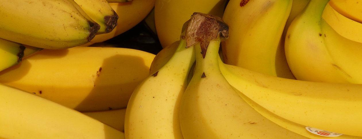 1260-bananas