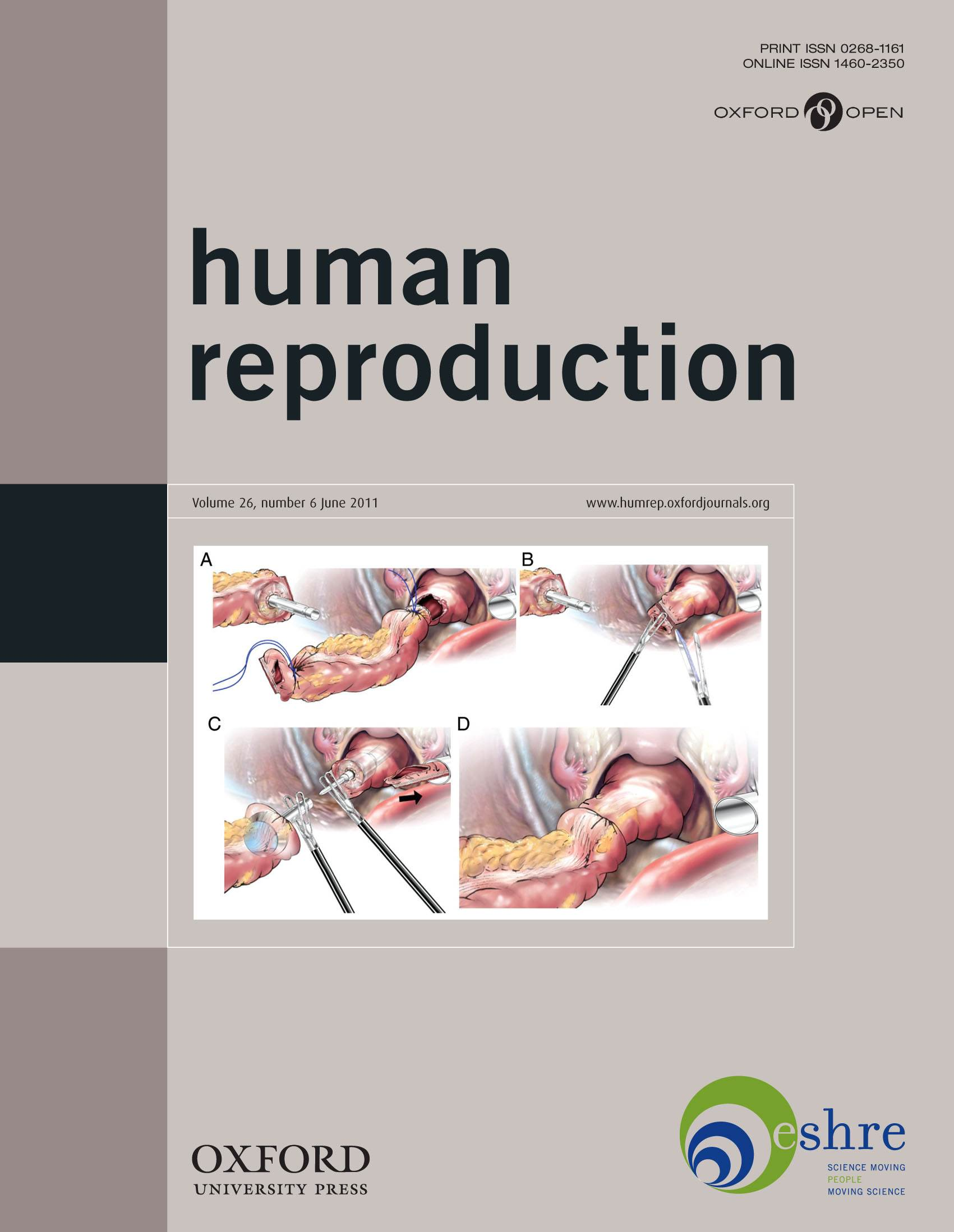 Reproduction in humans pictures