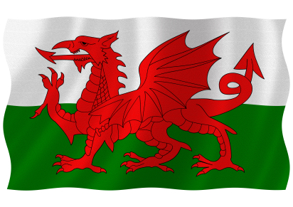 Image result for welsh