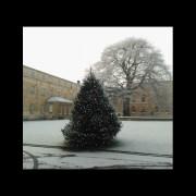 Oxford Quad in December