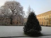 Oxford quad on 12 December