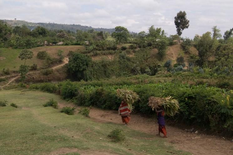 Tanzanian_farmers