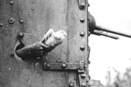 1260-Messenger_pigeon_released_from_British_tank_1918_IWM_Q_9247