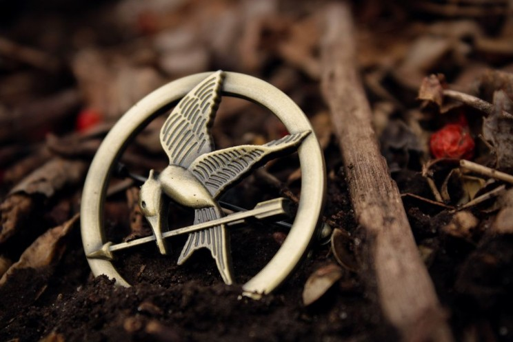 The Hunger Games, by Kendra Miller. CC-BY-2.0 via flickr.