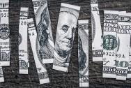 money crop