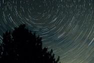 1260_stardust