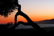 1260-sunset-214096_1280
