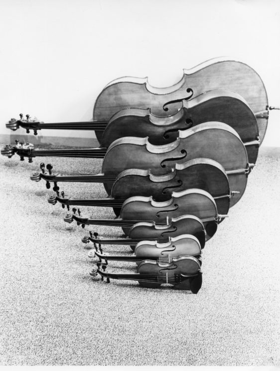 Image Credit: An example of Chladni patterns in violins, image supplied by author