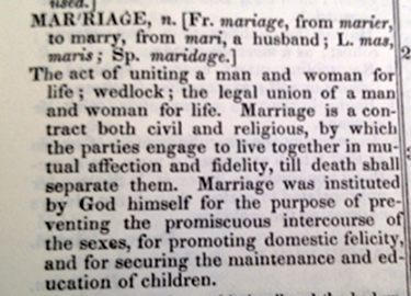 Heterosexual definition oxford