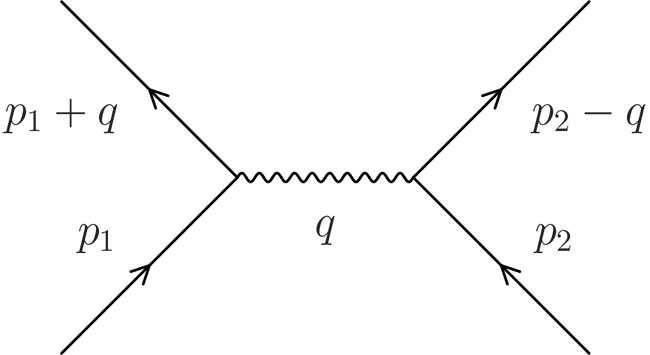 Feynman Diagrams And The Fly In The Ointment Oupblog