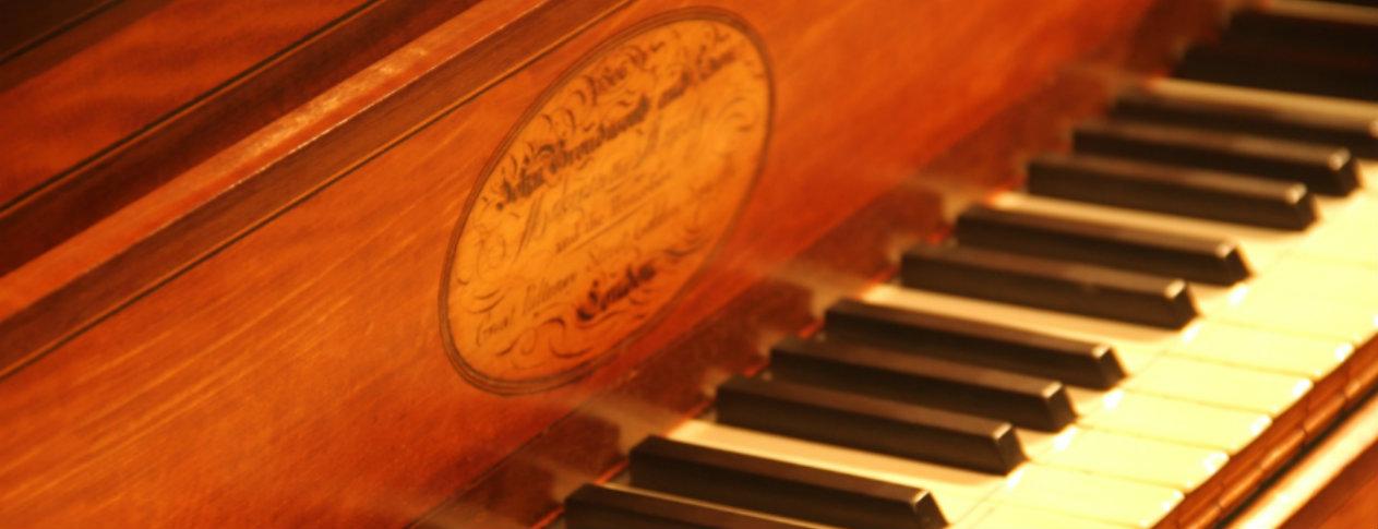 beethoven the pianist skowroneck tilman