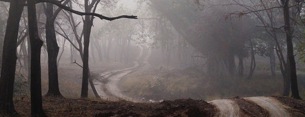 Lovecraft resurgent | OUPblog