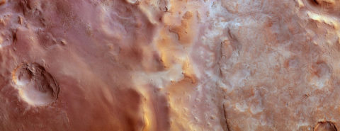 Where are the Martian scientists?