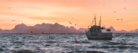 How does ocean health impact life and livelihoods? [podcast]