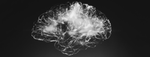 The neuroscience of human consciousness [podcast]